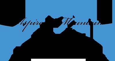 logo(山志)